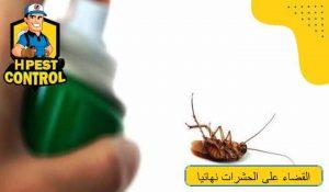 طرق القضاء على الحشرات نهائيا