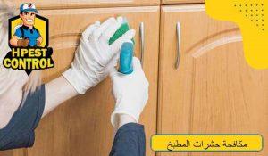 طرق مكافحة حشرات المطبخ