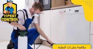مكافحة حشرات المطبخ