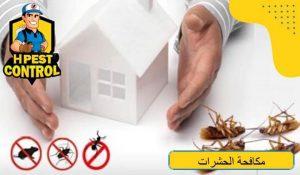افضل طرق مكافحة الحشرات