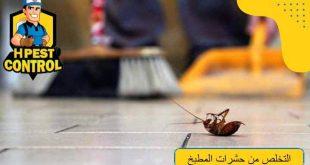 التخلص من حشرات المطبخ