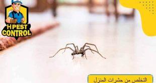 التخلص من حشرات المنزل