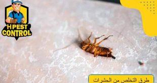طرق التخلص من الحشرات